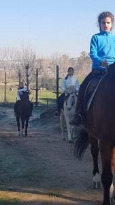 IMG caballos-20200218-WA0019