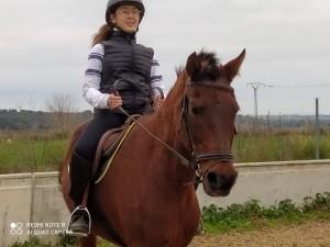 IMG_caballos20200202_115602